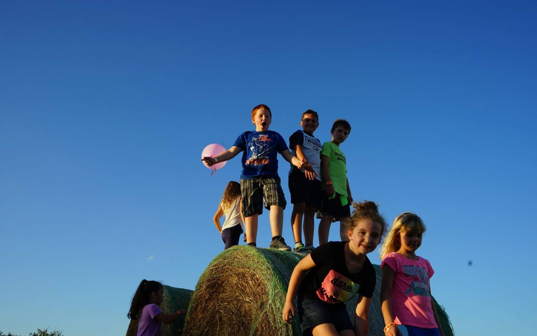 Children's Pumpkin Patch Adventure