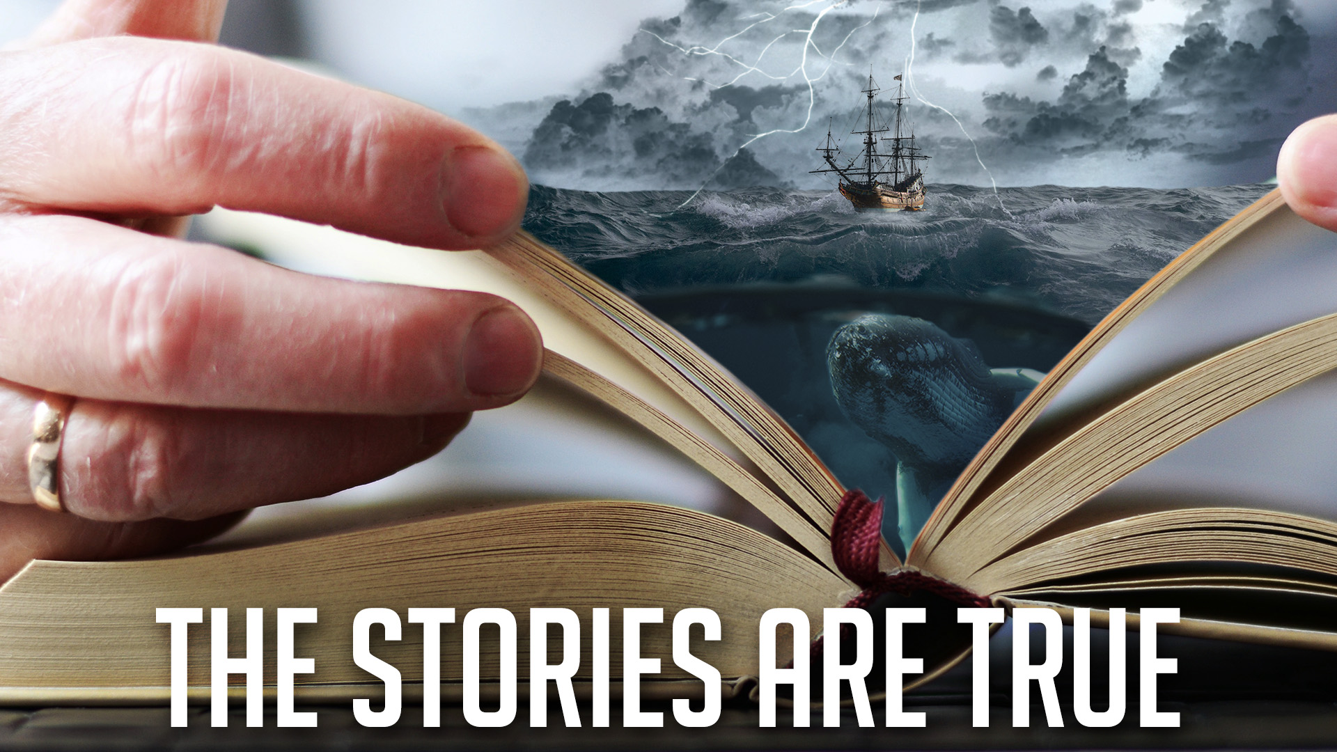 The Stories Are True: Moses